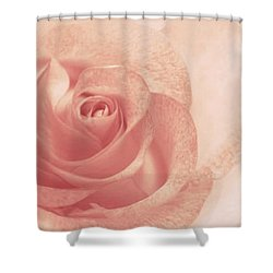 Shower Curtain featuring the photograph Marilyn's Sweet Rose by The Art Of Marilyn Ridoutt-Greene