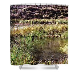 Marine Headlands Pond And Flowers Shower Curtain by Ted Pollard