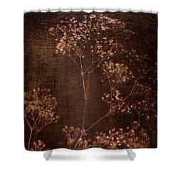 Marroncito Shower Curtain
