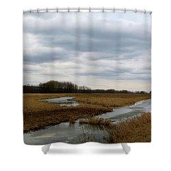 Marsh Day Shower Curtain