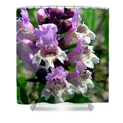 Marsh Flower Shower Curtain