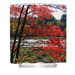 Marsh In Autumn Shower Curtain