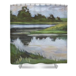 Marsh, June Afternoon Shower Curtain