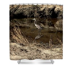 Marsh Bird Shower Curtain