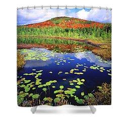 Marsh Pond Shower Curtain
