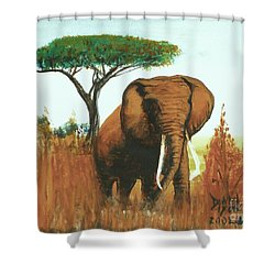 Shower Curtain featuring the painting Marsha's Elephant by Donna Dixon