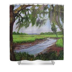 marshes of Charleston  Shower Curtain