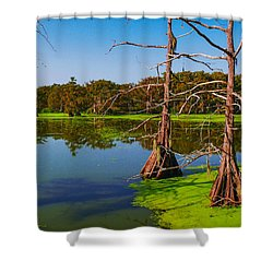 Marshes Of Wallisville Shower Curtain