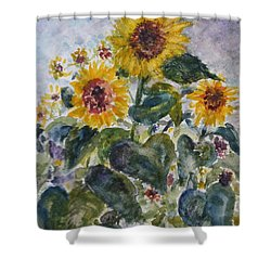 Martha's Sunflowers Shower Curtain