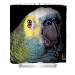 Marty The Blue Front Amazon Shower Curtain by Melissa Messick