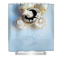 Marvellous Mushrooms Shower Curtain