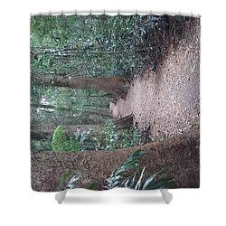 Mary Cairncross Rainforest  Shower Curtain