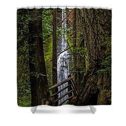 Mary Mere Shower Curtain