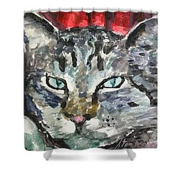 Shower Curtain featuring the painting Mason by Stan Tenney