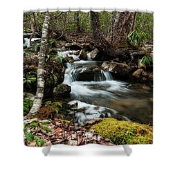 Massanutten Spring 2 Shower Curtain