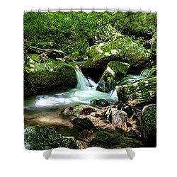 Massanutten Spring June 2016 Shower Curtain