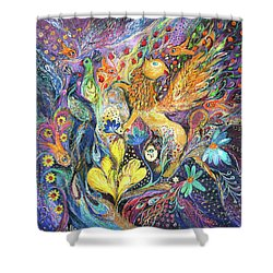 Master Of The Magic Key Shower Curtain by Elena Kotliarker