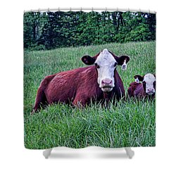 Shower Curtain featuring the photograph Matched Set by Cricket Hackmann
