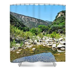 Shower Curtain featuring the photograph Matilija Hot Springs by Kyle Hanson