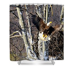Shower Curtain featuring the photograph Mating Pair At Nest by Randall Branham