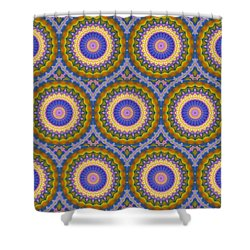 Matrix Pattern Design 003 A Shower Curtain