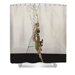 Matthew Twenty Six, Fifty Seven - Sixty Eight Shower Curtain