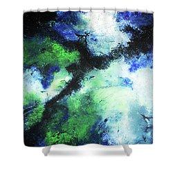 Matthew's Odyssey Shower Curtain