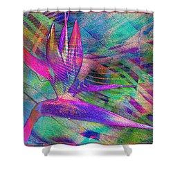 Maui Bird Of Paradise Shower Curtain