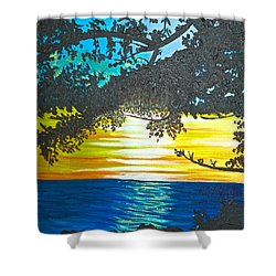 Maui Sunset Shower Curtain by Donna Blossom