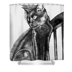 Shower Curtain featuring the drawing Maurice  by Shawna Rowe