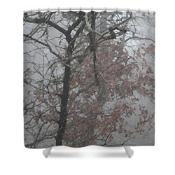 May I Have The Next Dance Shower Curtain by Carolina Liechtenstein