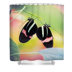 May I Have This Dance? Shower Curtain