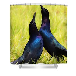 Shower Curtain featuring the photograph May We Dance by Kelly Marquardt