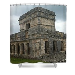 Mayan Stone Homes  Shower Curtain