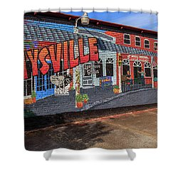 Shower Curtain featuring the photograph Maysville Mural by Doug Camara