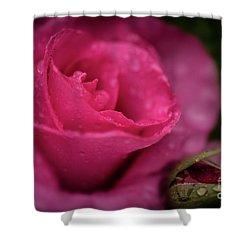 Mccartney Rose Shower Curtain