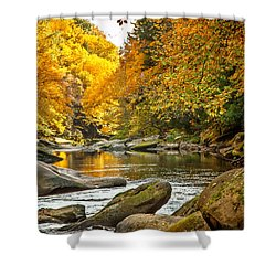 Shower Curtain featuring the photograph Mcconnell's Mill State Park by Skip Tribby