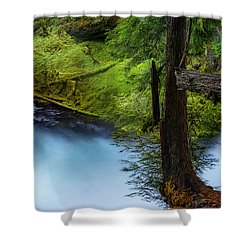 Shower Curtain featuring the photograph Mckenzie River From Sahalie Falls by Cat Connor