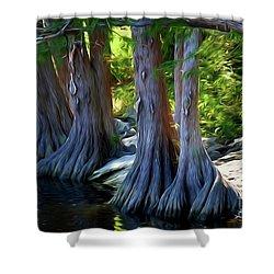 Mckinney Falls State Park - Texas 12118-2 Shower Curtain
