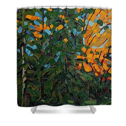 Mcmichael Forest Wall Shower Curtain