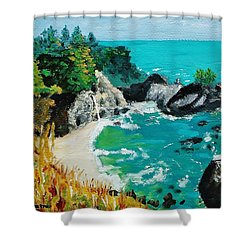 Mcway Falls  Big Sur Shower Curtain