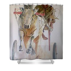 Me And My Partener Shower Curtain by Khalid Saeed