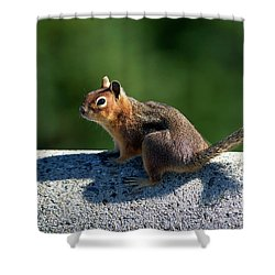 Shower Curtain featuring the photograph Me And My Shadow by Sharon Talson