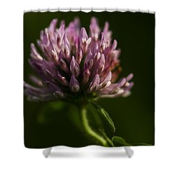 Meadow Clover Shower Curtain
