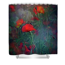 Meadow In Another Dimension Shower Curtain by Agnieszka Mlicka