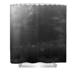 Meadow In The Fog In Black And White Shower Curtain by Kelly Hazel