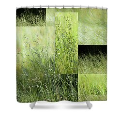 Meadow -  Shower Curtain