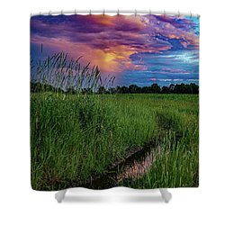 Shower Curtain featuring the photograph Meadow Lark by Kendall McKernon