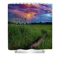 Meadow Lark Shower Curtain
