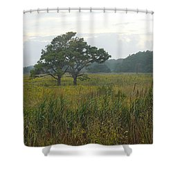 Meadow Of Seaside Goldenrod Shower Curtain